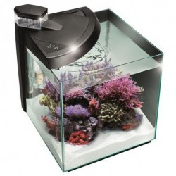 ACQUARIO NEWA MORE 30 NERO REEF