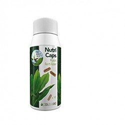 FLORA GROW NUTRI CAPS 10 CMP