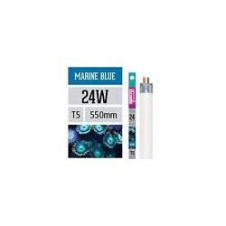 MARINE BLUE T5 24 W 55 cm.