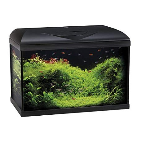 ACQUARIO BASIC LED 60