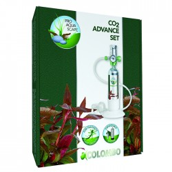 IMPIANTO CO2 COLOMBO