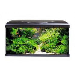 ACQUARIO AMTRA SYSTEM 80 LED BLACK