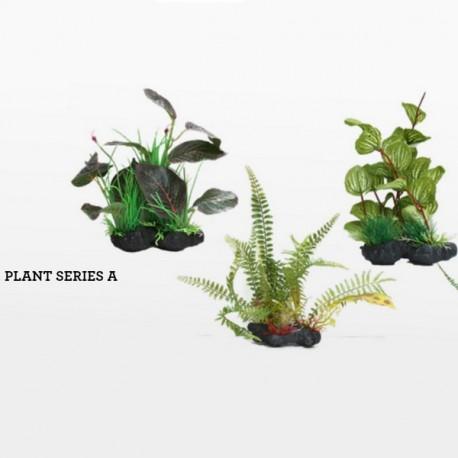 PIANTA FINTA AMAZING PLANT A 25-30 CM.