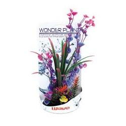 PIANTA FINTA WONDER PLANT H 30-35 CM.